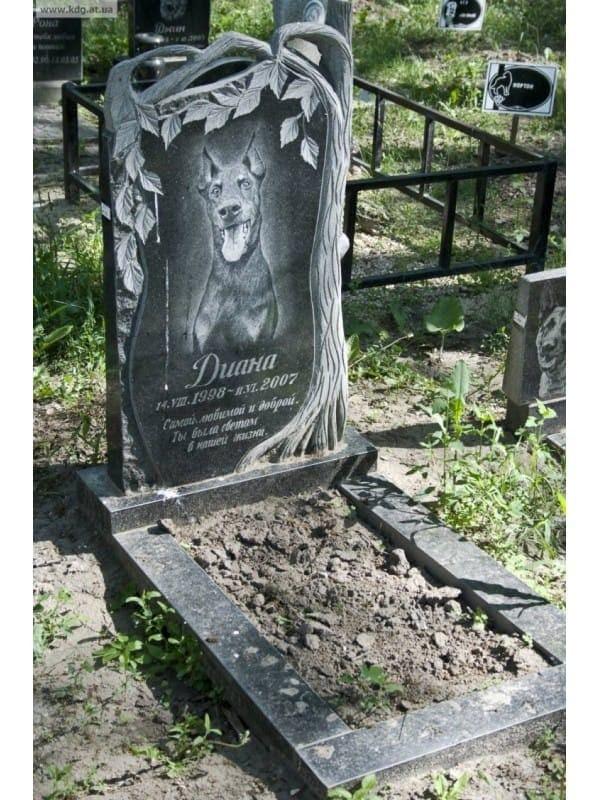 фото памятники животным